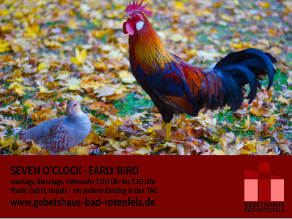2019 Early bird ab Januar